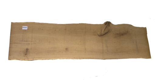 Oak Slab (Three Shape) 040